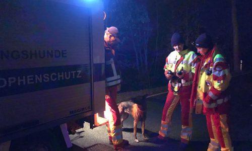 Rettungshunde nach schwerem Verkehrsunfall im Einsatz